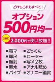 全オプション500円